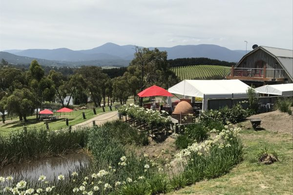 Yarra Valley private tours