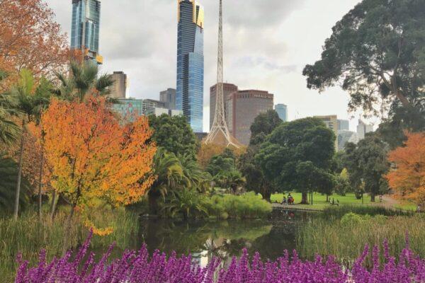 Melbourne Private Tours