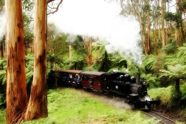 Puffing Billy Railway - Dandenong Ranges