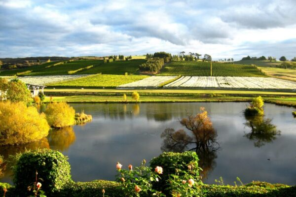 Clare Valley private tours Australia from Adelaide