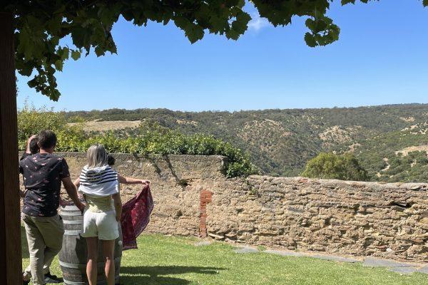exclusive wine tours SA