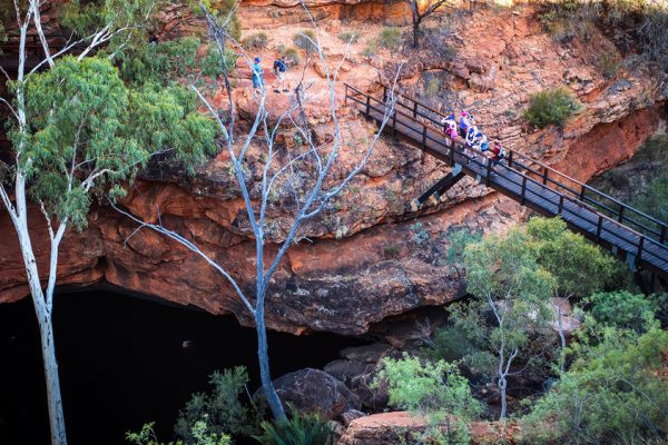 Kings Canyon package tour